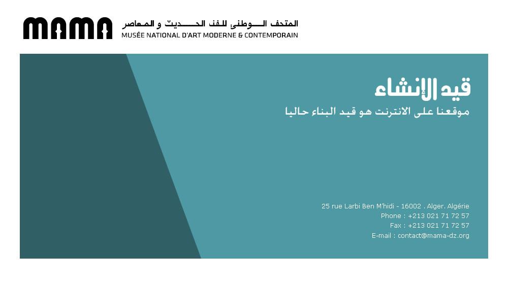 Musee Public National D Art Moderne Et Contemporain D Alger